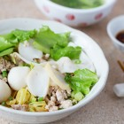 Fish Ball Minced Pork Noodles Recipe