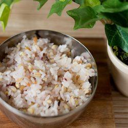 Multigrain Rice Recipe