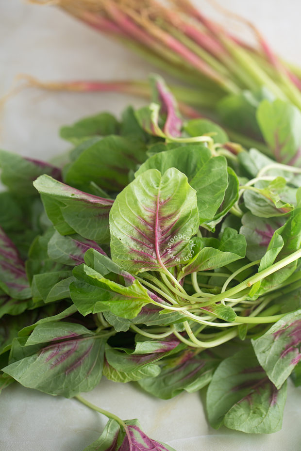 Chinese Red Spinach (Amaranth Green)