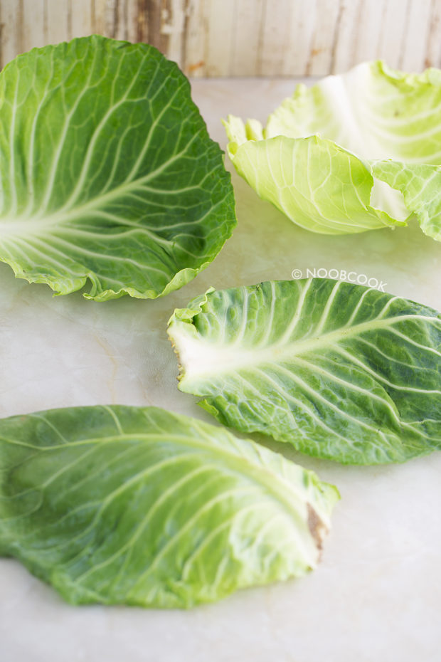 Round Cabbage Outer Leaves